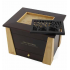 Craftsman Style Memory Chest