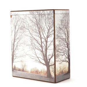 Scattering Serenity Large/Adult Box Urn